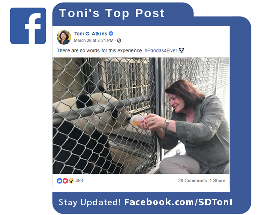 Toni's Top Facebook Post