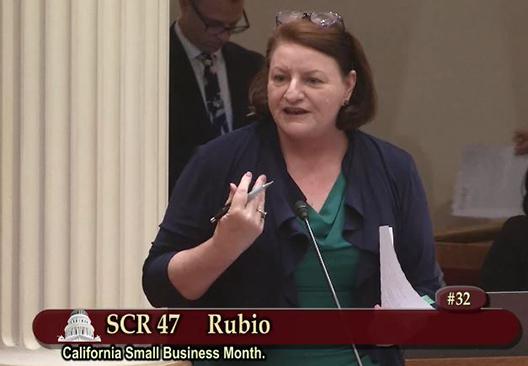 Toni Atkins on the Senate Floor
