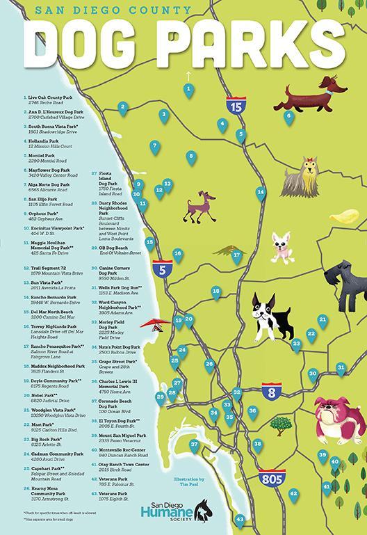 San Diego Dog Parks